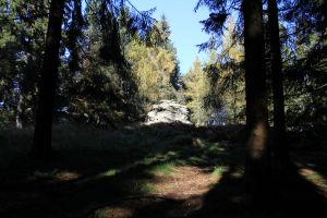 DunkelsteinerWald042