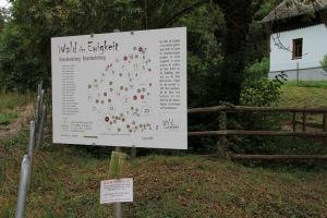 WienerWald 20150906 -005