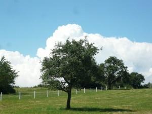 28_Wolkenkonturen