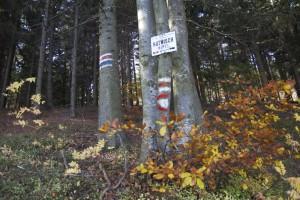 Hutwisch20131020 – 082