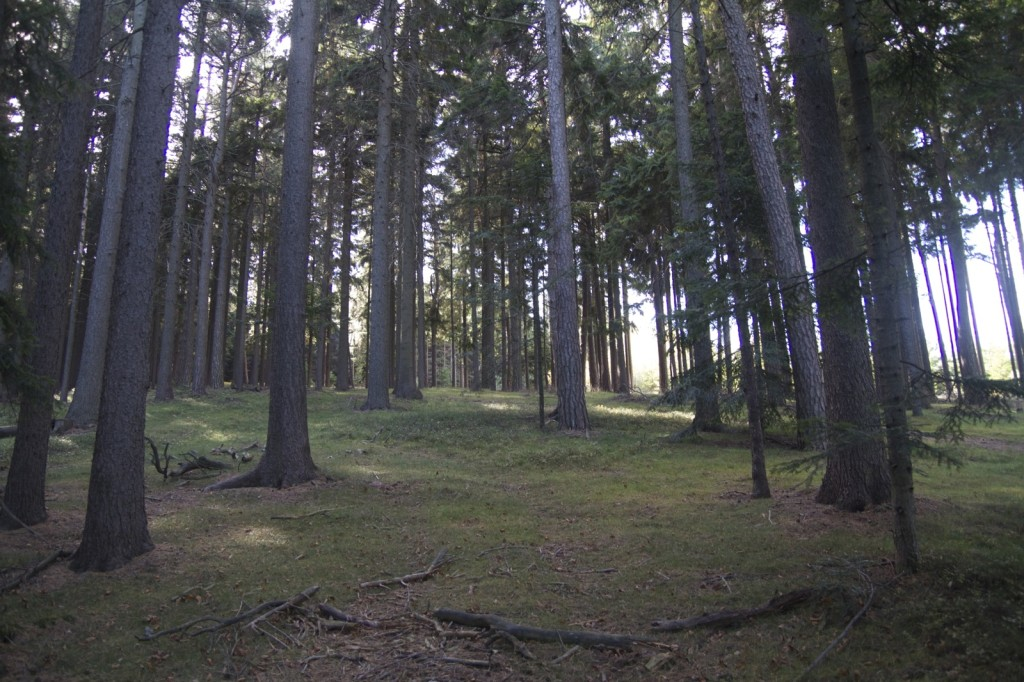 Hutwisch20131020 – 105