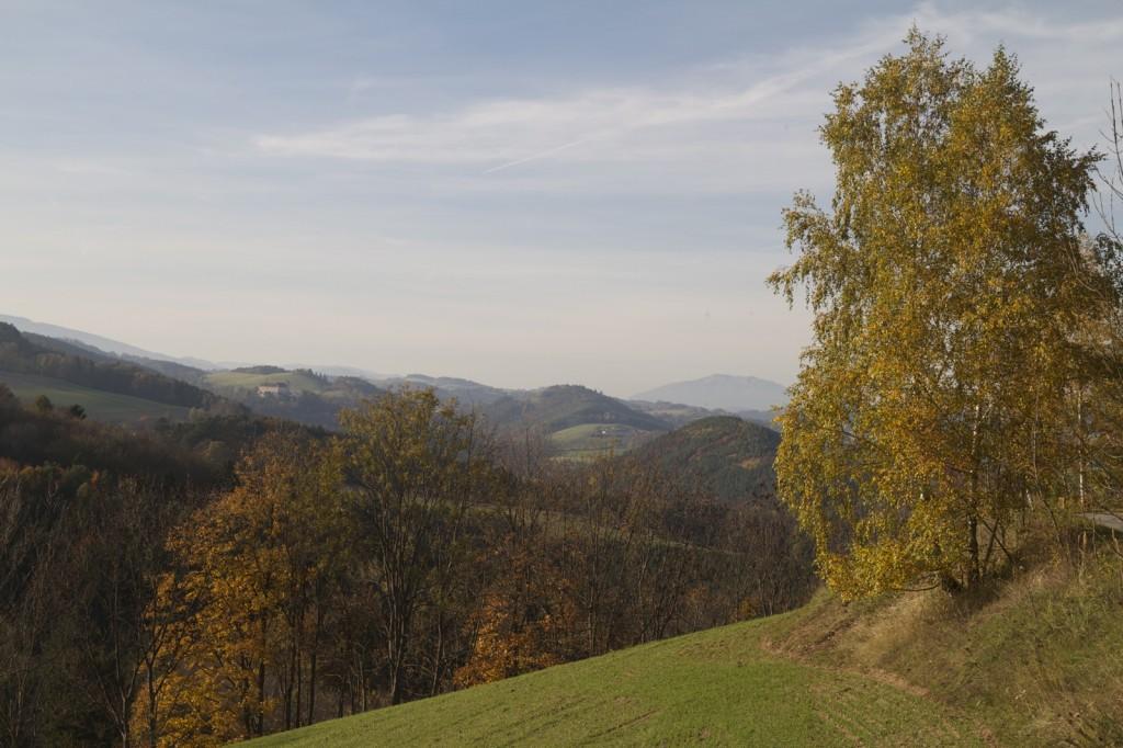 Hutwisch20131020 – 197