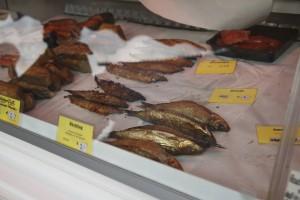 FischmarktPortugiesenviertel – 091