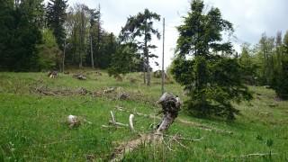 SteinwandklammAlmesbrunnberg – 134